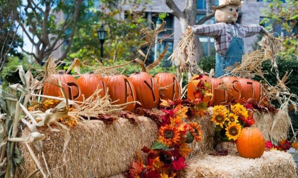 2014 Harvest Fest