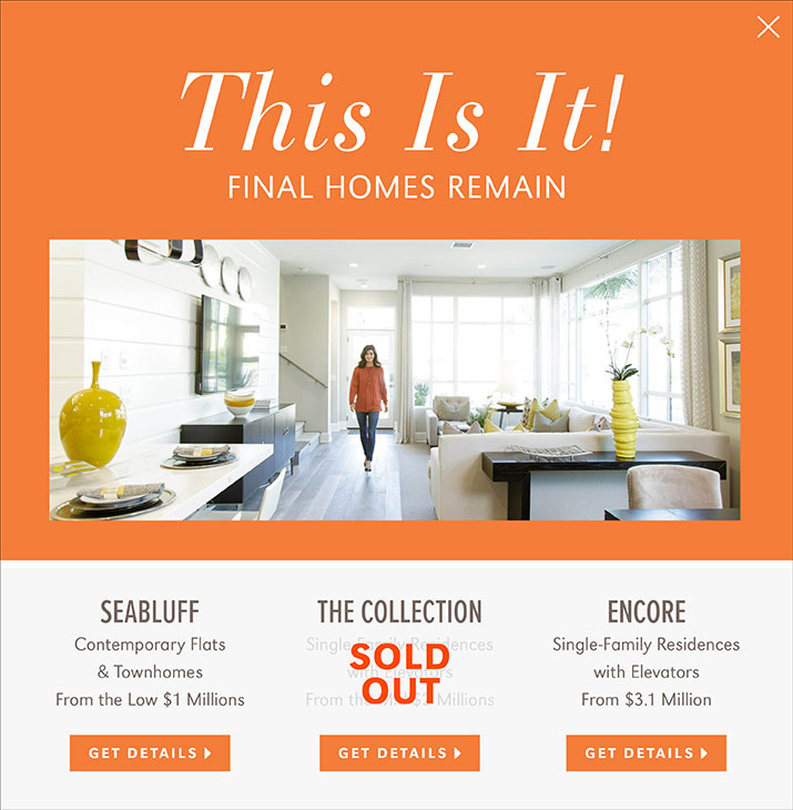 This is it! Final Homes Remain.