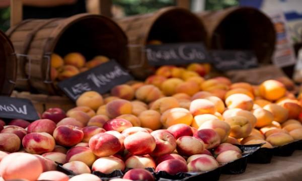 Playa-Vista-Farmers-Market-Web