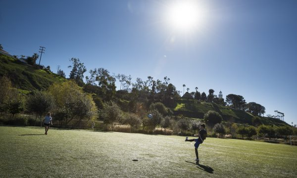 5 Playa Vista Parks to Check Out Today