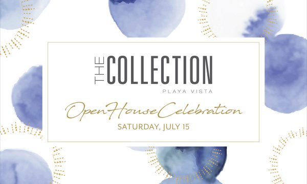 The Collection Open House
