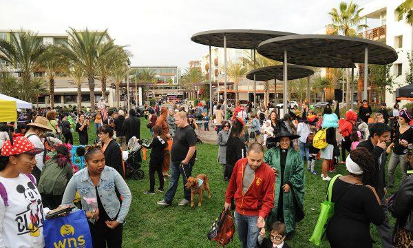 Playa Vista October Events