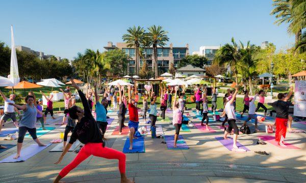 Playa Vista Events