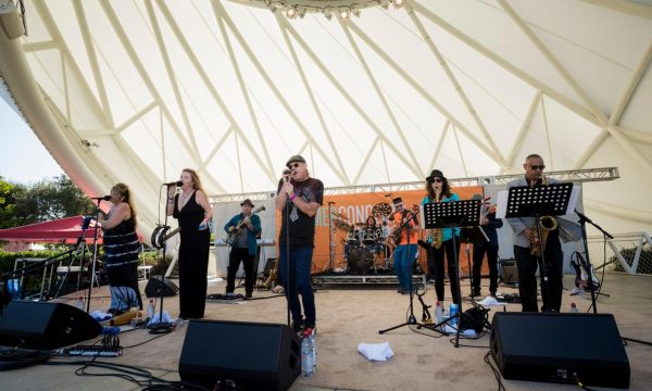 Concerts in the Park: Steely Jam